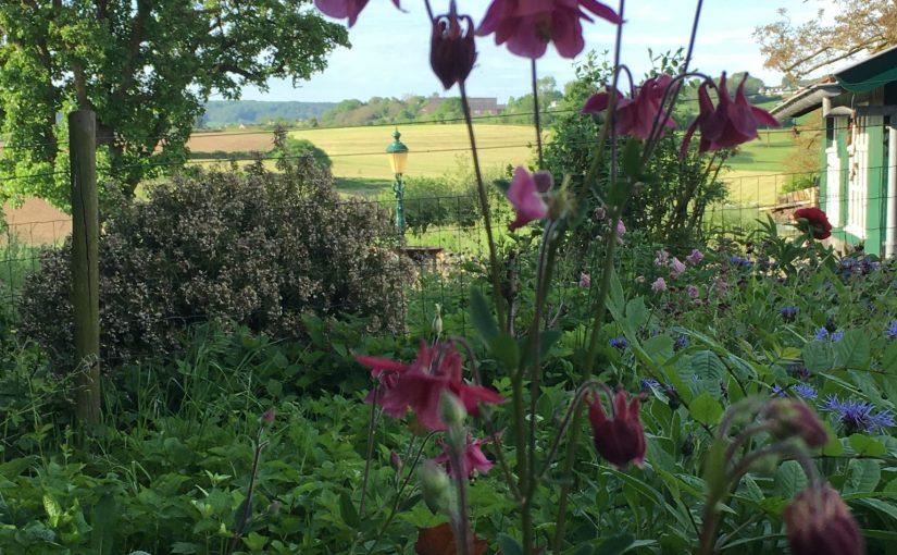 Stiltedag Mindfulness Heuvelland