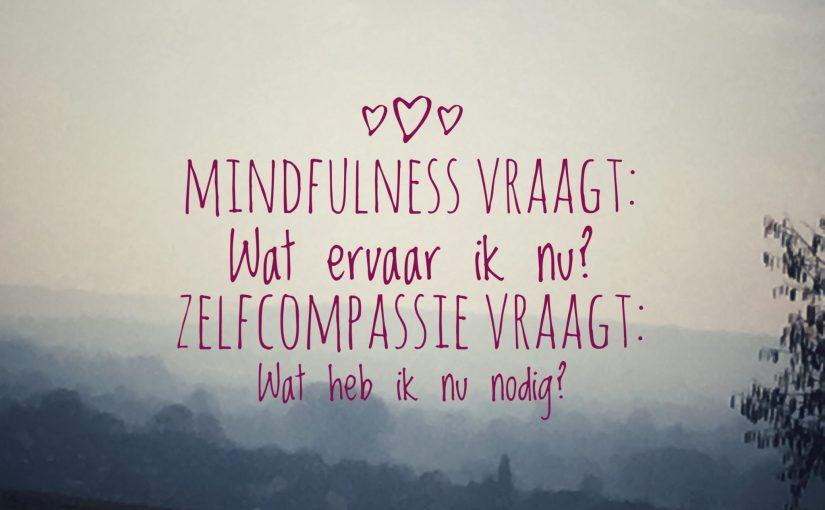 Mindfulness versus zelfcompassie