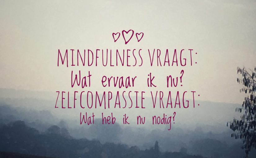 Mindful Zelfcompassie (MSC) training ONLINE -CORONA AANBIEDING